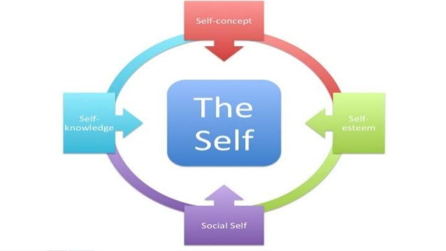 looking glass self essay The looking-glass self is a society that serves as a looking-glass in such a mirror we can see the reaction of different people on our behavior and position in the society only in such a way we can estimate ourselves, our own actions and thoughts.