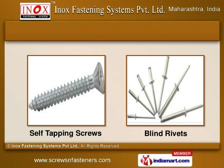 Self Tapping Screws   Blind Rivets