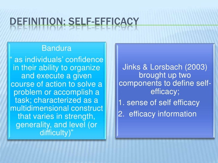 DEFINITION: SELF EFFICACY ...