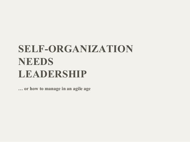 SELF-ORGANIZATION NEEDS LEADERSHIP … or how to manage in an agile age