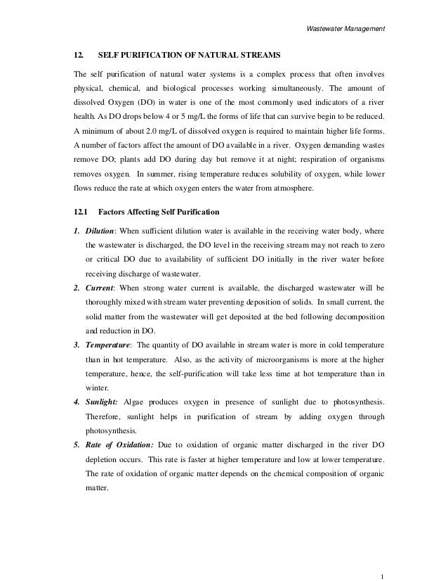 Format for personal statement