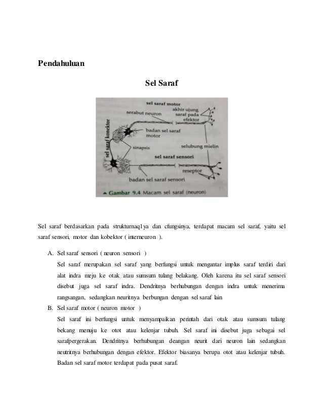 Großartig Sensorik Arbeitsblatt Ideen - Arbeitsblätter für ...