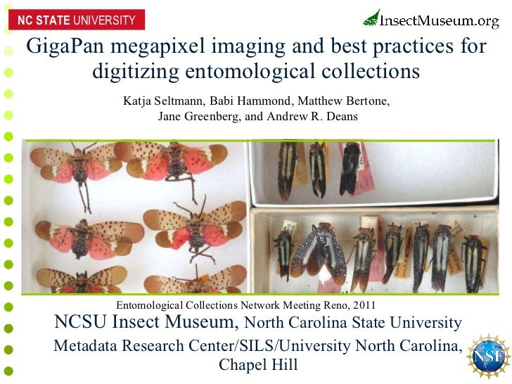 GigaPan megapixel imaging and best practices for digitizing entomological collections NCSU Insect Museum,  North Carolina ...