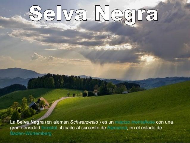 La Selva Negra (en alemán Schwarzwald ) es un macizo montañoso con una gran densidad forestal ubicado al suroeste de Alema...