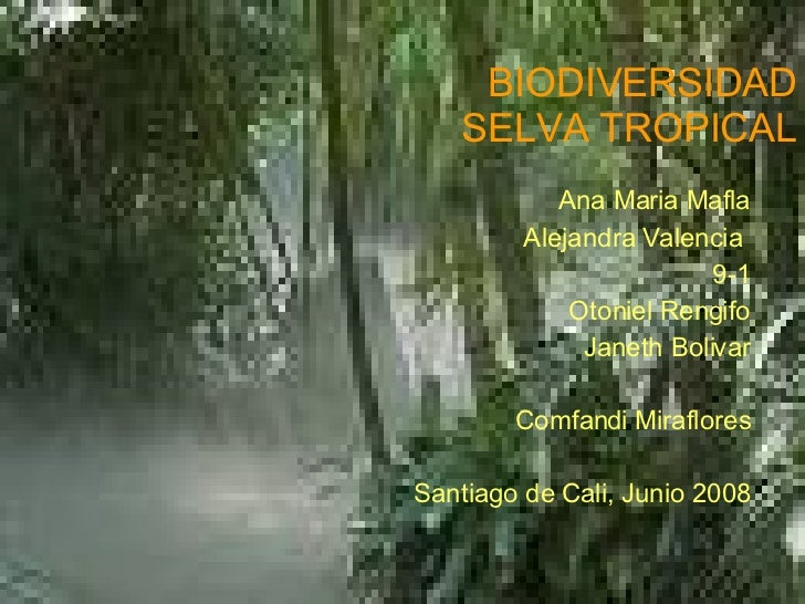 BIODIVERSIDAD SELVA TROPICAL Ana Maria Mafla Alejandra Valencia  9-1 Otoniel Rengifo Janeth Bolivar Comfandi Miraflores Sa...