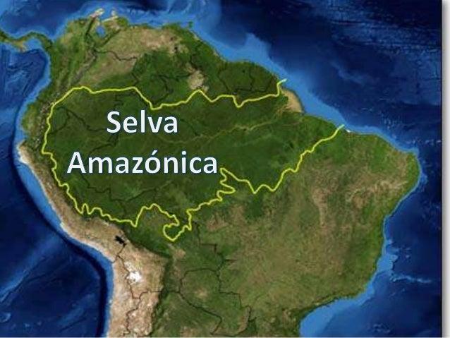 Resultado de imagen de La Amazonía