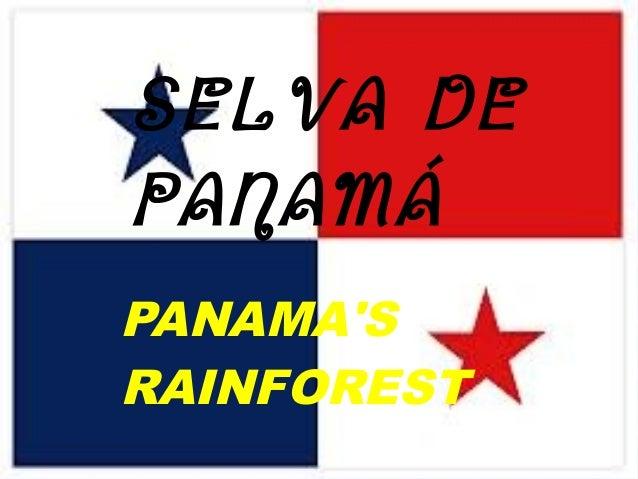 PANAMA'S RAINFOREST SELVA DE PANAMÁ
