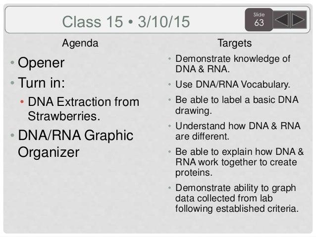 Dna and rna differences venn diagram vatozozdevelopment dna ccuart Choice Image