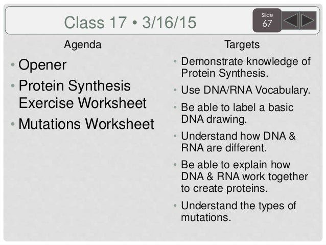Sem2 3rd quarter biology agenda and targets 2015 – Types of Mutations Worksheet