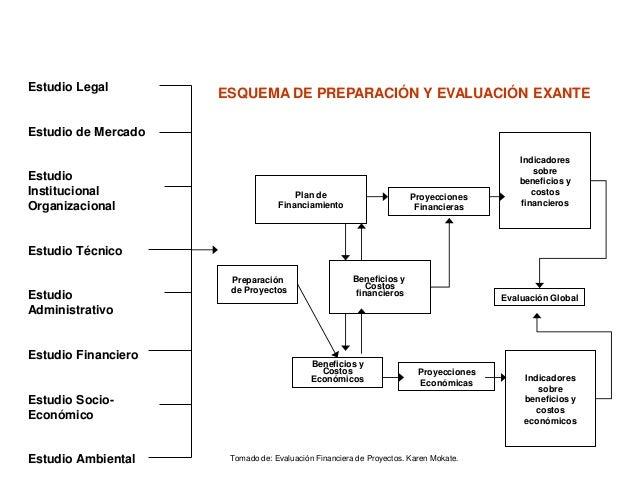 Evaluacion financiera de proyectos de inversion karen mokate