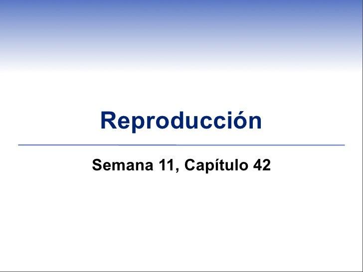 ReproducciónSemana 11, Capítulo 42