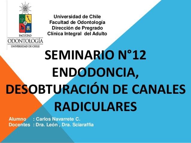 SEMINARIO N°12 ENDODONCIA, DESOBTURACIÓN DE CANALES RADICULARES Alumno : Carlos Navarrete C. Docentes : Dra. León , Dra. S...