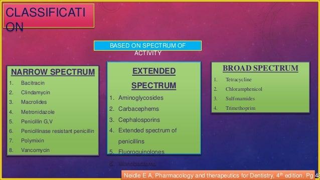is amoxicillin a broad spectrum antibiotic