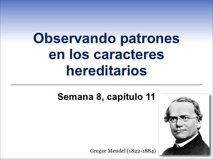Observando patrones en los caracteres    hereditarios   Semana 8, capítulo 11         Gregor Mendel (1822-1884)