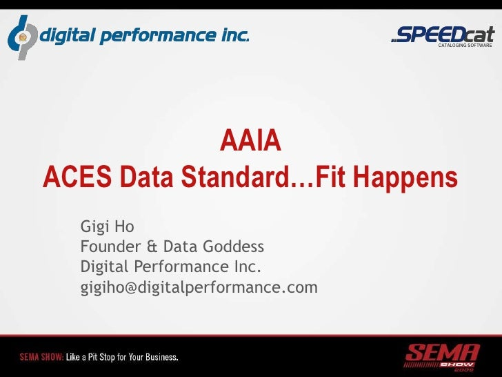 AAIAACES Data Standard…Fit Happens<br />Gigi Ho<br />Founder & Data Goddess<br />Digital Performance Inc.<br />gigiho@digi...