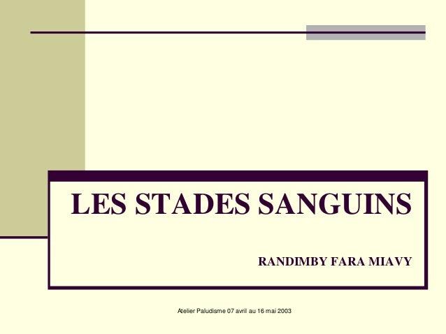 LES STADES SANGUINS                                  RANDIMBY FARA MIAVY     Atelier Paludisme 07 avril au 16 mai 2003
