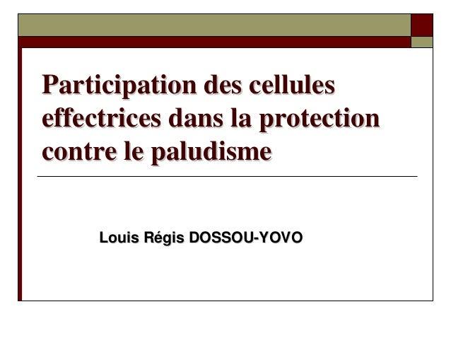 Participation des celluleseffectrices dans la protectioncontre le paludisme     Louis Régis DOSSOU-YOVO