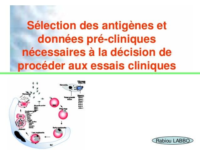 Sélection des antigènes et    données pré-cliniques nécessaires à la décision deprocéder aux essais cliniques             ...