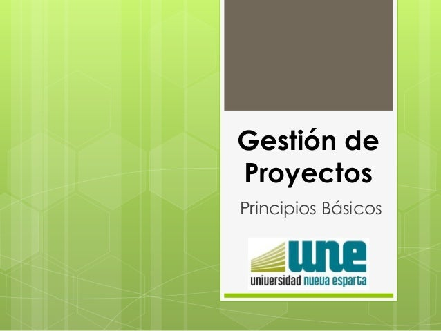 Gestión de Proyectos Principios Básicos