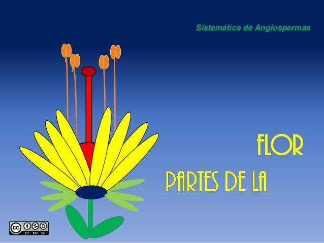 Sistemáticade Angiospermas  FLOR