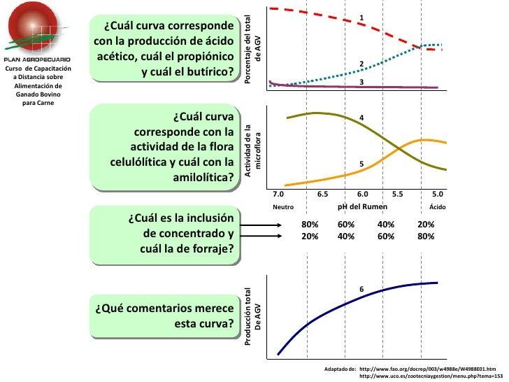 1<br />Porcentaje del total <br />de AGV<br />¿Cuál curva corresponde con la producción de ácido acético, cuál el propióni...