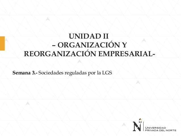 UNIDAD II – ORGANIZACIÓN Y REORGANIZACIÓN EMPRESARIAL- Semana 3.- Sociedades reguladas por la LGS