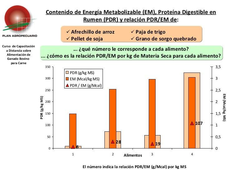 Curso  de Capacitación a Distancia sobre Alimentación de Ganado Bovino  para Carne Contenido de Energía Metabolizable (EM)...