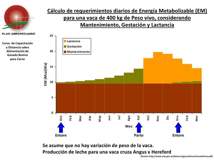 Cálculo de requerimientos diarios de Energía Metabolizable (EM) para una vaca de 400 kg de Peso vivo, considerando Manteni...