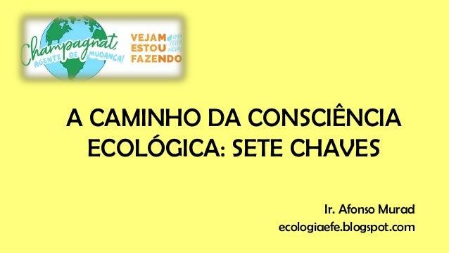 Ir. Afonso Murad ecologiaefe.blogspot.com A CAMINHO DA CONSCIÊNCIA ECOLÓGICA: SETE CHAVES