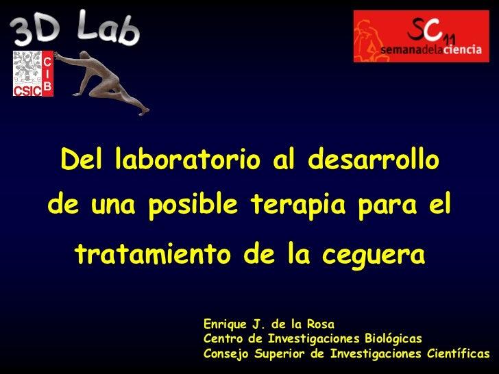 Del laboratorio al desarrollode una posible terapia para el tratamiento de la ceguera           Enrique J. de la Rosa     ...