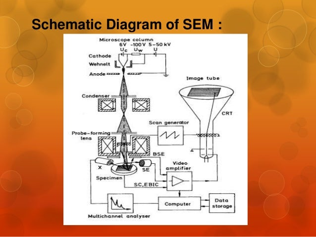 Sem and tem Sem A Schematic Diagram on hplc schematic, design schematic, ipad schematic, stm schematic, microscope schematic, iphone schematic,