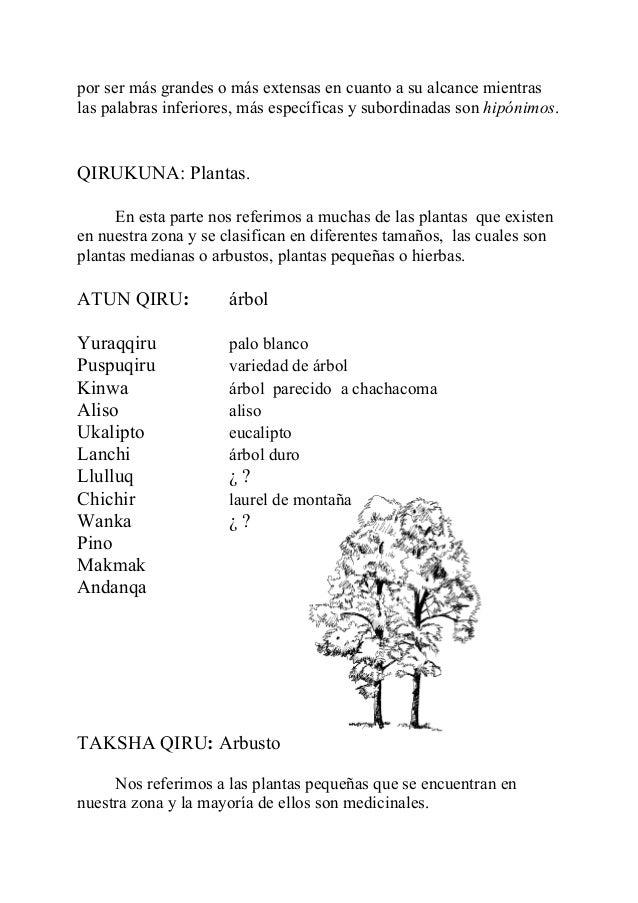 Semantica quechua de lambayeque for Cuales son las partes de un arbol