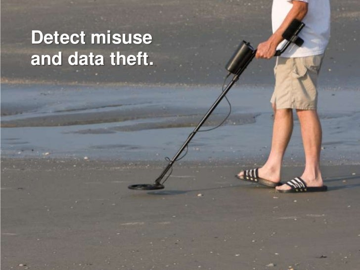 Detect misuse and data theft.