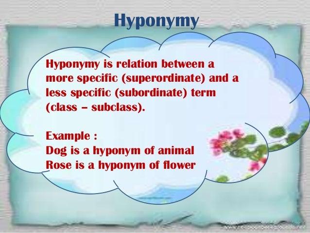 hyponym hypernym relationship