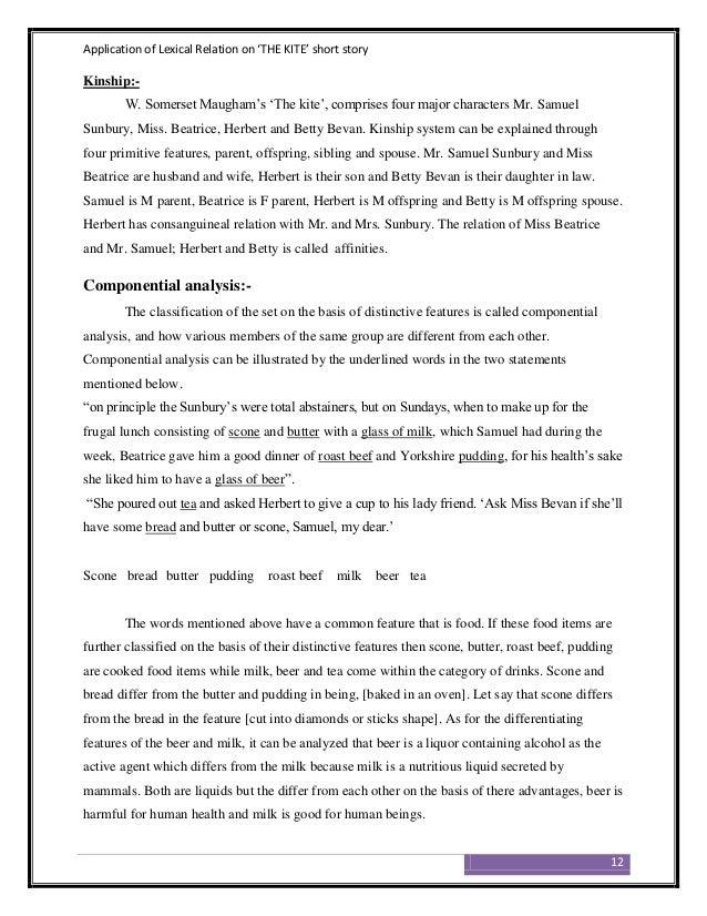The kite short story summary