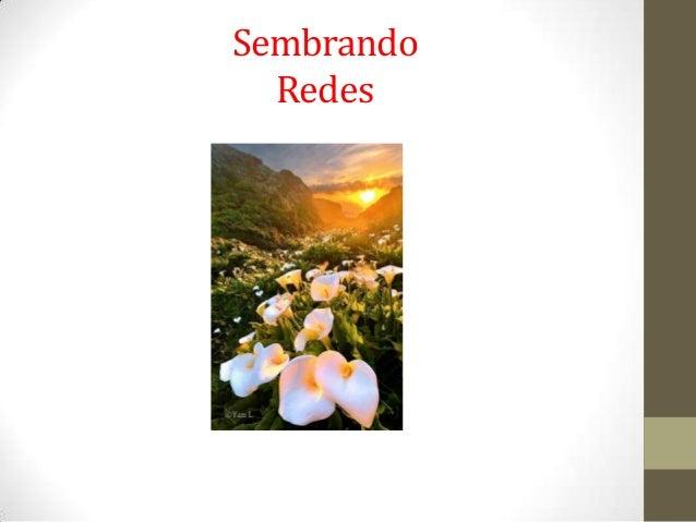 SembrandoRedes