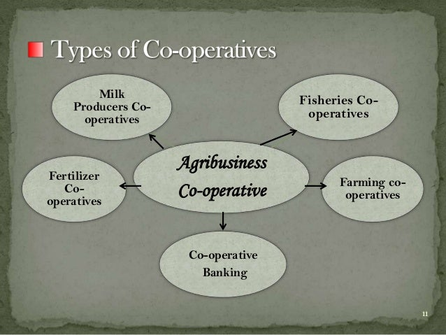 Role of RBI / NABARD and Co-operative Banks in Promoting Rural Credit