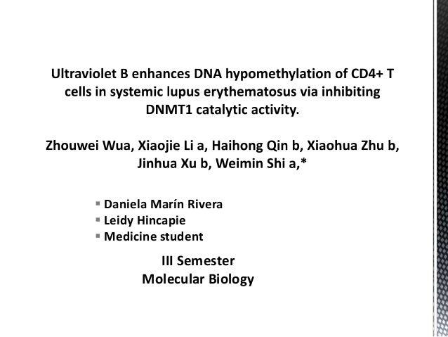  Daniela Marín Rivera  Leidy Hincapie  Medicine student III Semester Molecular Biology
