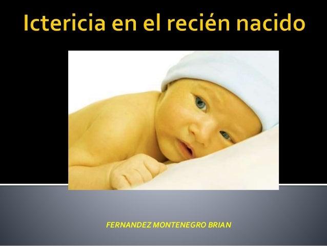 FERNANDEZ MONTENEGRO BRIAN
