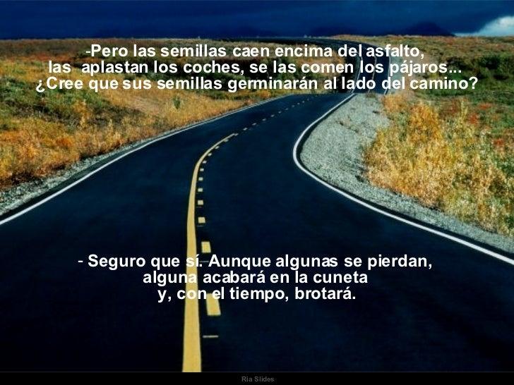 Ria Slides <ul><li>Pero las semillas caen encima del asfalto,  </li></ul><ul><li>las  aplastan los coches, se las comen lo...