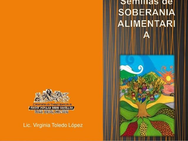 Lic. Virginia Toledo López