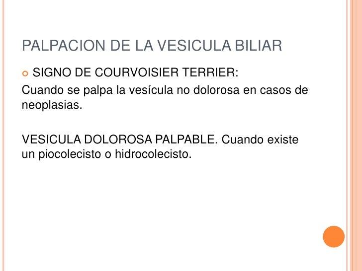 PALPACION DE LA VESICULA BILIAR SIGNO DE COURVOISIER TERRIER:Cuando se palpa la vesícula no dolorosa en casos deneoplasia...