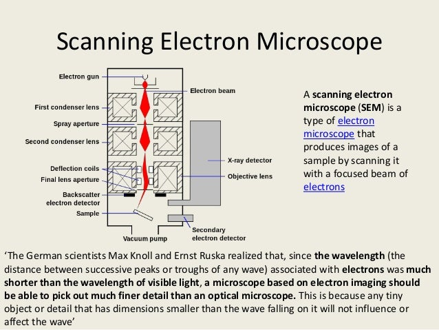 scanning electorn microscope