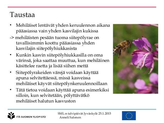 Mehiläinen Jyväskylä Laboratorio