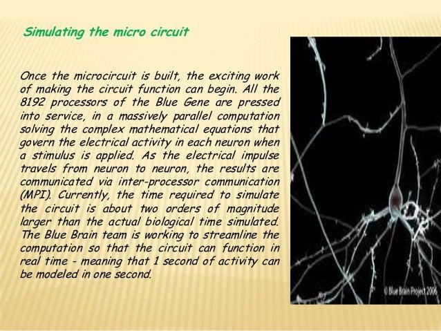 Blue brain 19 ccuart Choice Image