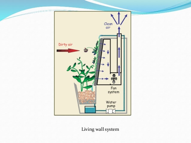 Living Wall System; 34. Problems With Vertical ...