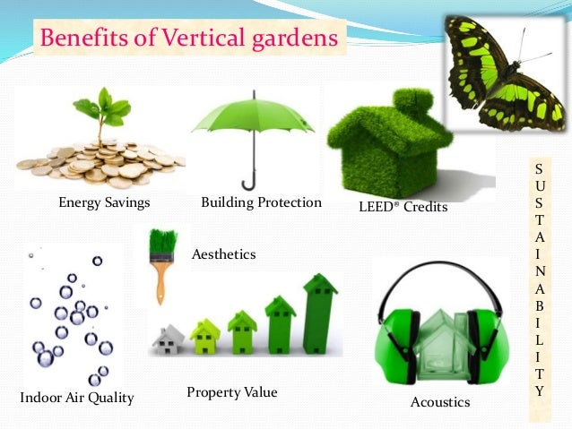 S U S T A I N A B I L I T Y Benefits of Vertical gardens Aesthetics  37. Roof top and vertical gardening for greening the cities