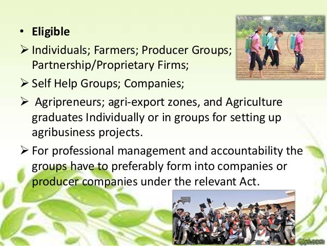 agribusiness marketing linkages in agricultural marketing pdf