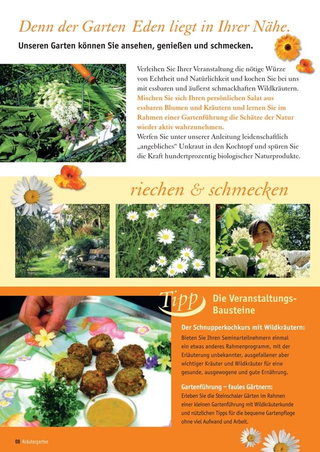 08 Kräutergarten Der Schnupperkochkurs mit Wildkräutern: Bieten Sie Ihren Seminarteilnehmern einmal ein etwas anderes Rahm...