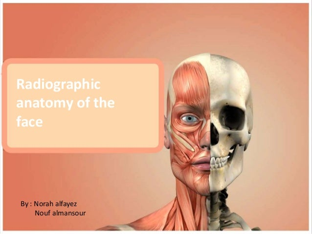 radiographic-anatomy-of-the-face-1-638.jpg?cb=1511514599